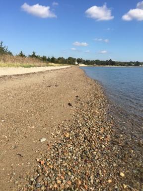 Godspeed Island Beach